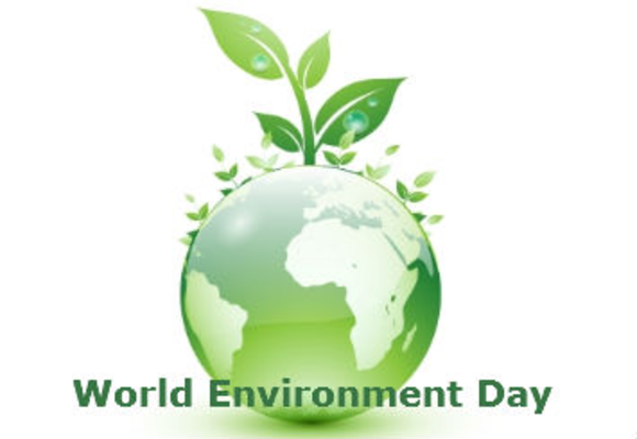 Essay on world environment day